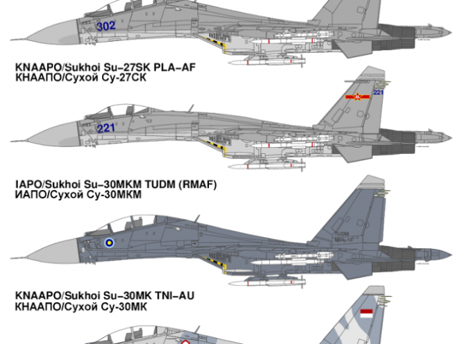 According to an Israeli website Iran will buy 250 long-distance Sukhoi fighter-bombers and 20 fuel tankers from Russia