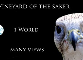 Saker message: I need a research assistant!