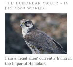 The European Saker