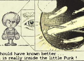 Inside the little punk