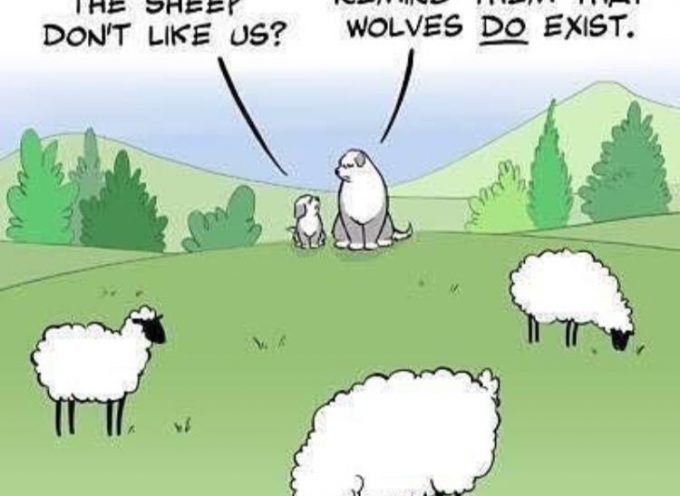 Of sheep, dogs and wolves