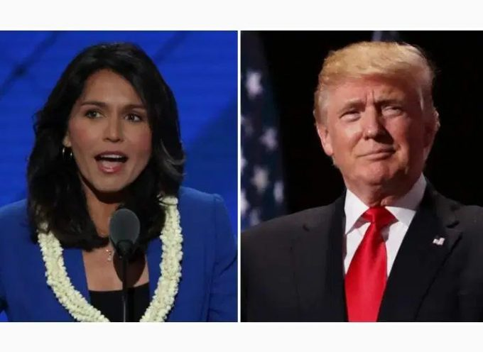 2019 Saker man of the year: Tulsi Gabbard and Donald Trump (runner up)