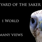 The Saker falcon and the earth viewed from the moon