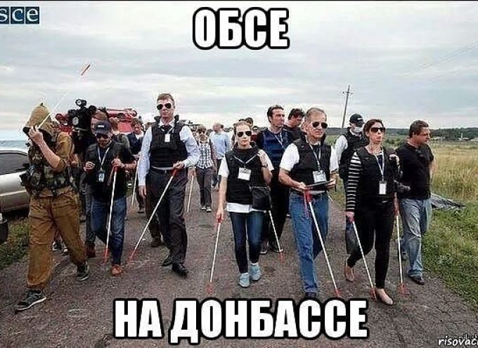 """The OSCE """"monitors"""" in the Donbass"""