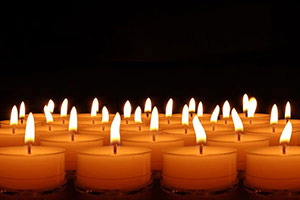 Support the Saker