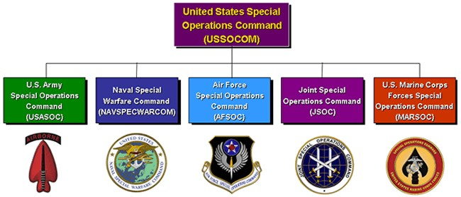 U.S. Special Operations Command has access to uniquely qualified units from across all branches of the U.S. military.