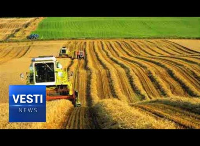 Vesti Special Report! Incredible Year of Harvests in Russia as Country Tops World Grain Markets