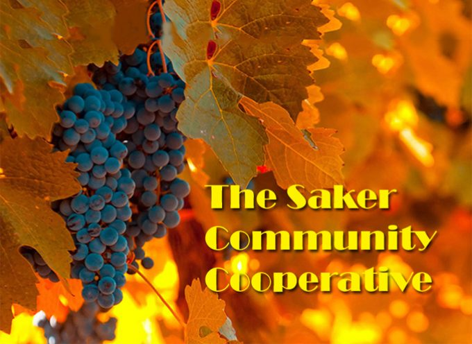 Books & News From Saker.Community