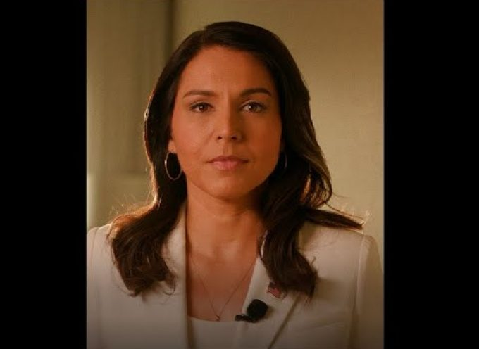 Tulsi Gabbard: Say no to getting dragged into Erdogan's war with Russia