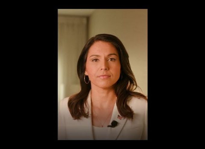 Tulsi Gabbard: Do you want to protect AQ or defeat them?